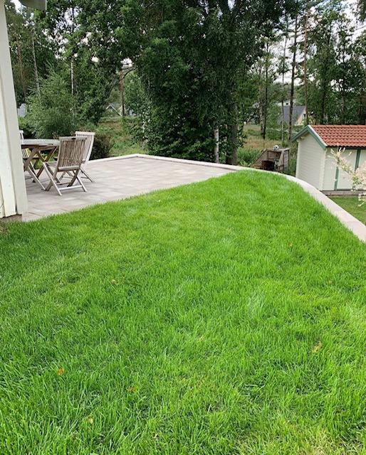 nyanlagd gräsmatta