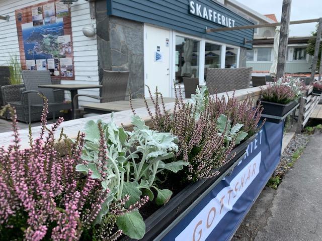 plantering på café, Larssons Trädgård